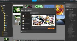 Corel PaintShop Pro 2020 Crack & Full Keygen Latest Download