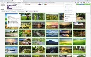Bulk Image Downloader Crack 5.85.0 With Registration Code